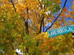 Autumn in Boston